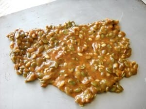 Spiced Pumpkin Seed Brittle with Chocolate and Sea Salt from My Kitchen Wand