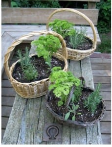 Herb Baskets from My Kitchen Wand