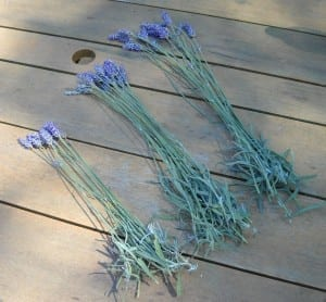 Lavender Wands from My Kitchen Wand