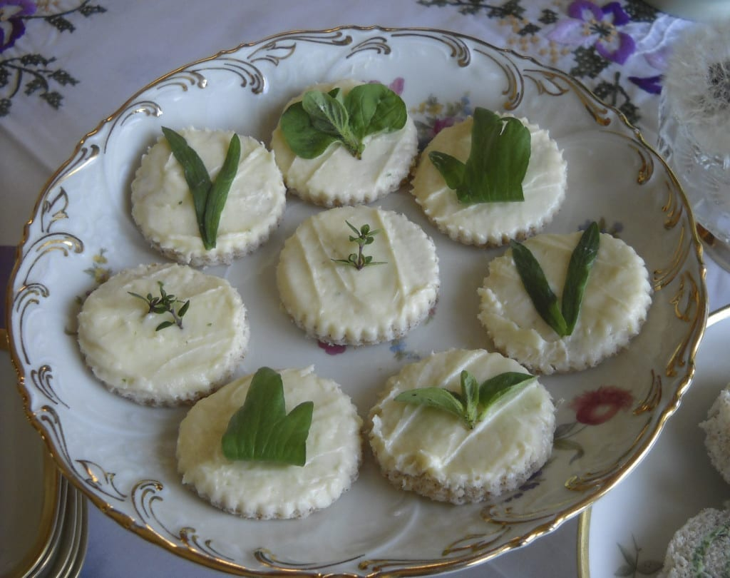 Cheese Rounds with Fresh Herbs from My Kitchen Wand