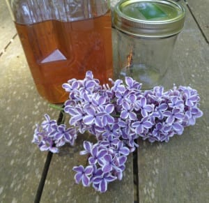 Lilac Honey at Beltane from My Kitchen Wand