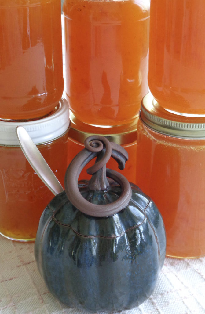 Apricot jam for Küchen wand