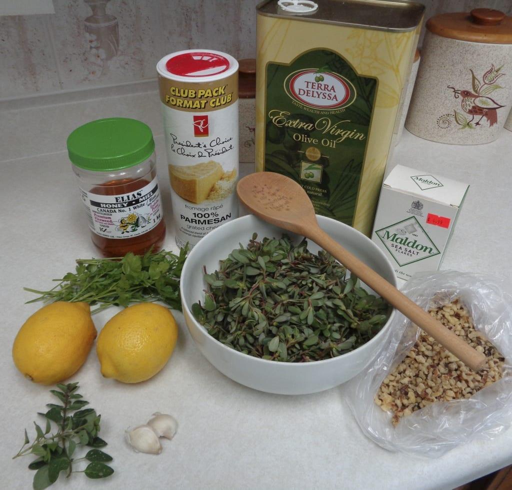Purslane Pesto from My Kitchen Wand