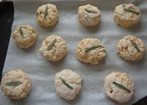 Sage & Pumpkin Biscuits from My Kitchen Wand