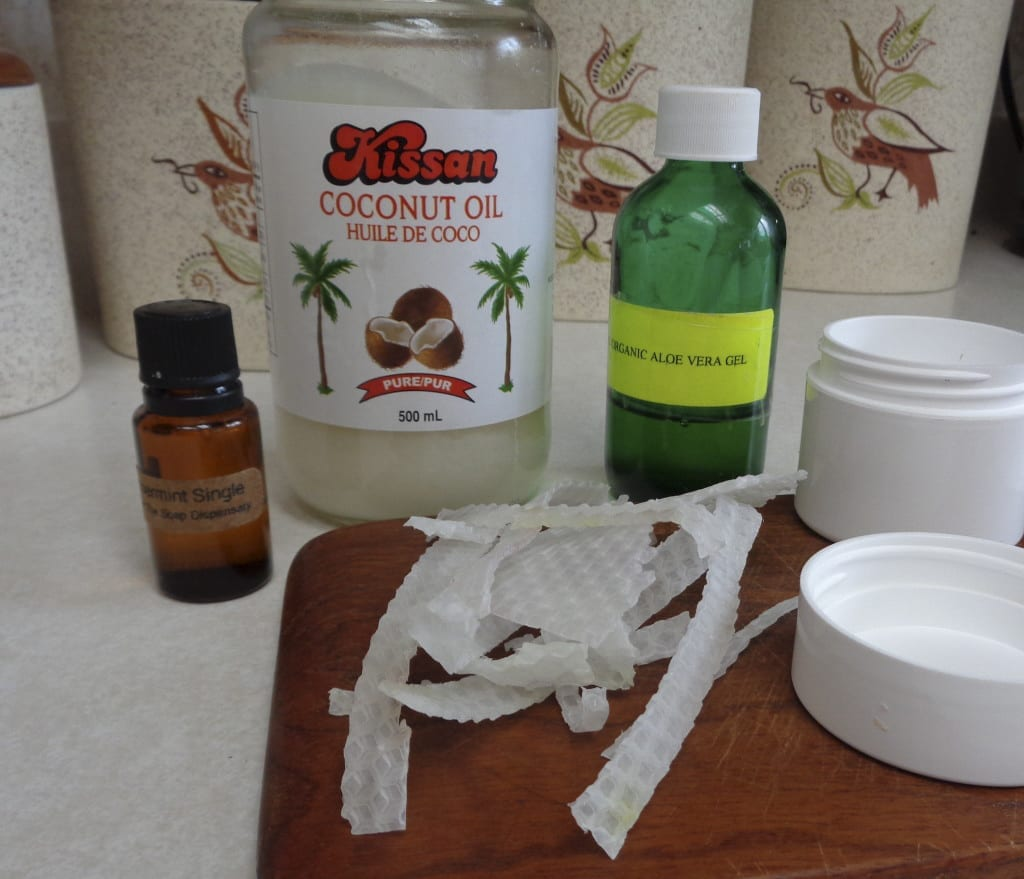 Aleo Coconut Lotion Tweaked for Winter Weather from My Kitchen Wand