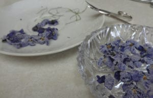 Sugared Violets from My Kitchen Wand