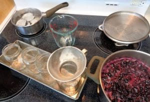 Blueberry Honey Compote from My Kitchen Wand