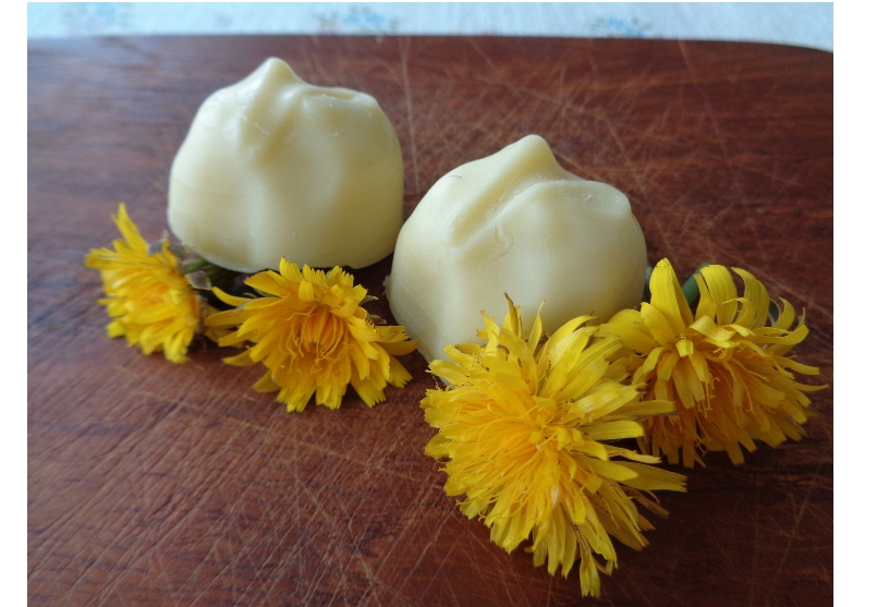 Dandelion Lotion Bars from My Kitchen Wand