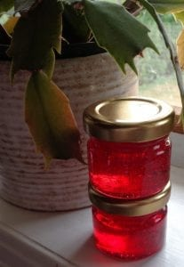 Red Currant and Rosemary Jelly from My Kitchen Wand
