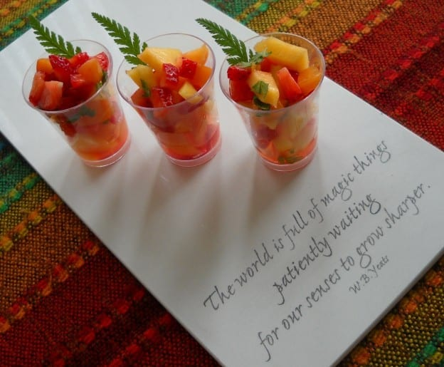 Fresh Fruit Salad Shooters from My Kitchen Wand