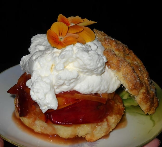 Roasted Nectarine Almond Shortcake from My Kitchen Wand