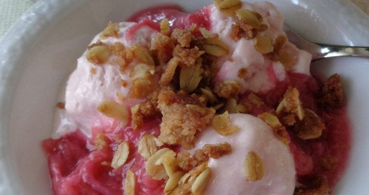 Rhubarb Crisp Frozen Yoghurt from My KItchen Wand