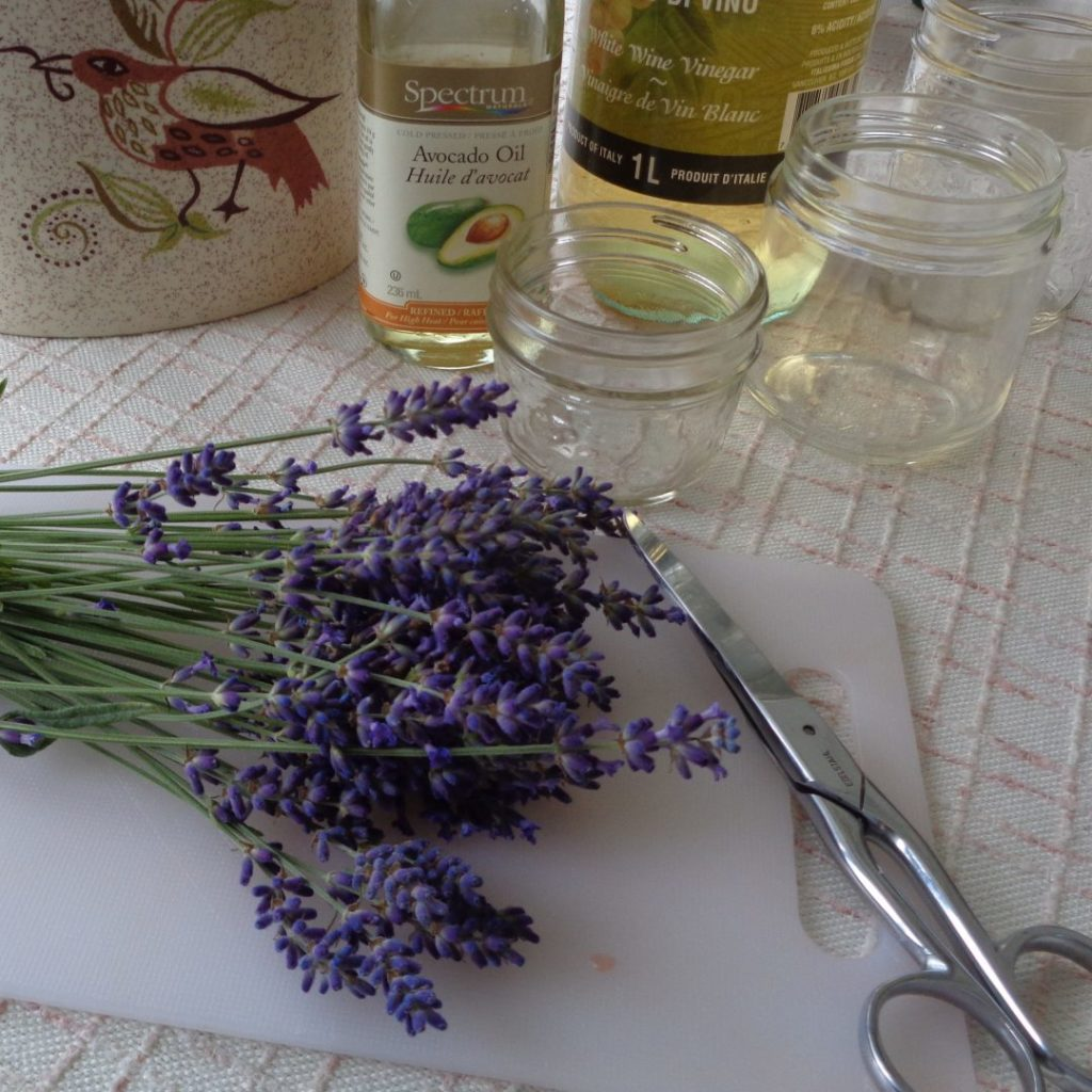 3 Ways Of Preserving Lavender from My Kitchen Wand